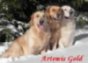 artemis-gold.cz