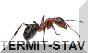 termit-stav.webnode.cz