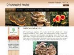 drevokazne-houby.webnode.cz