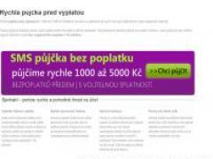pujckypredvyplatou.net